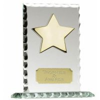 Pearl Edge7 Jade Gold Star Award</br>JC004BS